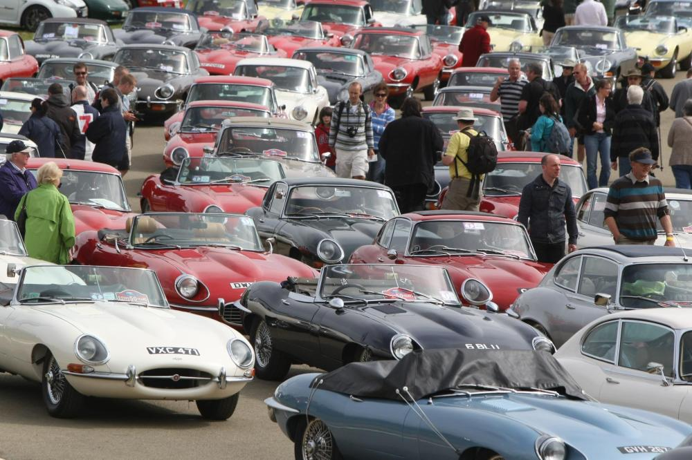 E-types on parade at the Silvestone Classic