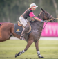 Upcoming Polo Events